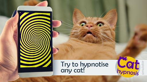 猫の催眠です。 シミュレータ