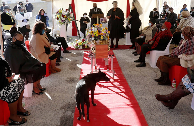 Sibongeseni Gabada's dog, Qanduqandu, mingles with mourners at her funeral in Khayelitsha on Wednesday.
