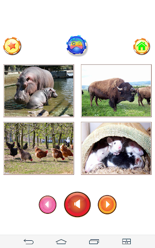 Animal sounds 6.9 screenshots 24