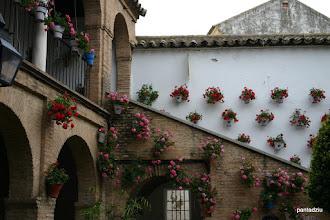 Photo: Cordoba - ukwiecone patio