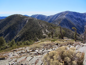 Photo: View southwest from the summit of Pine Mt. (9648') toward Dawson Peak (9575') (left) with Mt. Harwood (9552') (middle), fourth tallest peak in the San Gabriels, and Mt. Baldy (10,064') (right), the tallest