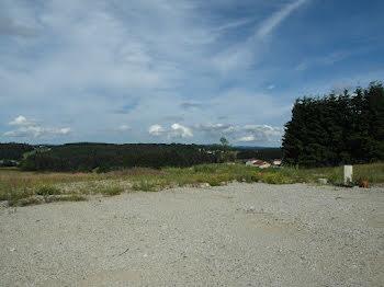 terrain à Sainte-Sigolène (43)