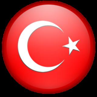 Türk BROWSER