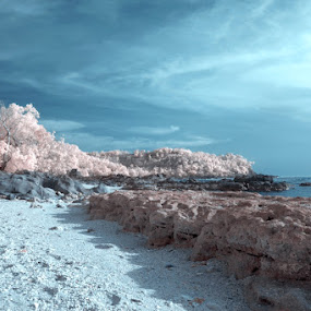 Wedi Ombo by Bagus Radhityo - Landscapes Beaches ( beach )