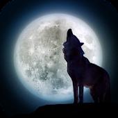 脱出ゲーム: 狼の隠した切り札