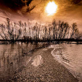 Flood 2 by Greg Bennett - Landscapes Waterscapes (  )