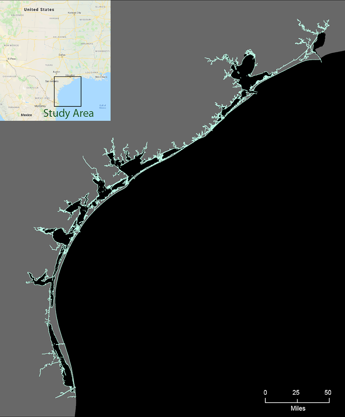 Texas coast with cyan overlay of ESI shoreline