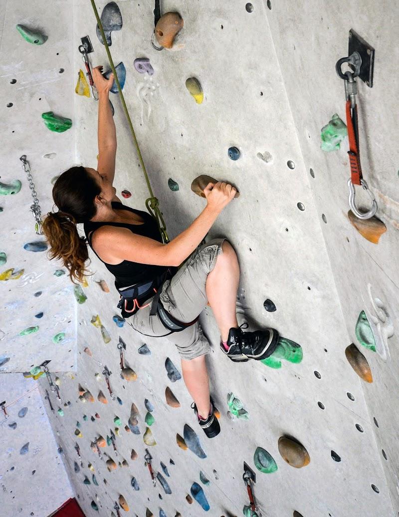 mi arrampico di Diana Cimino Cocco