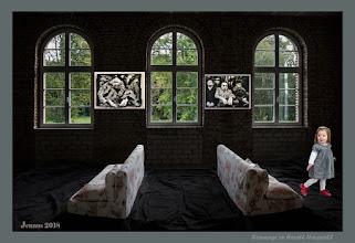 Photo: Die neuen Sofas im Gartenhaus
