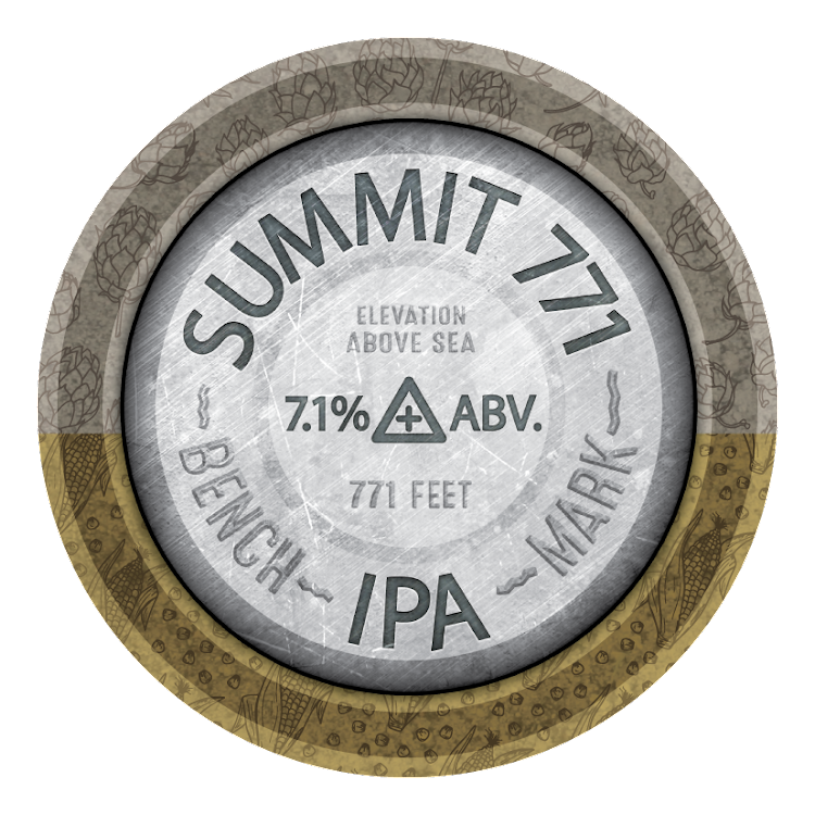 Logo of Mountain Town Summit 771