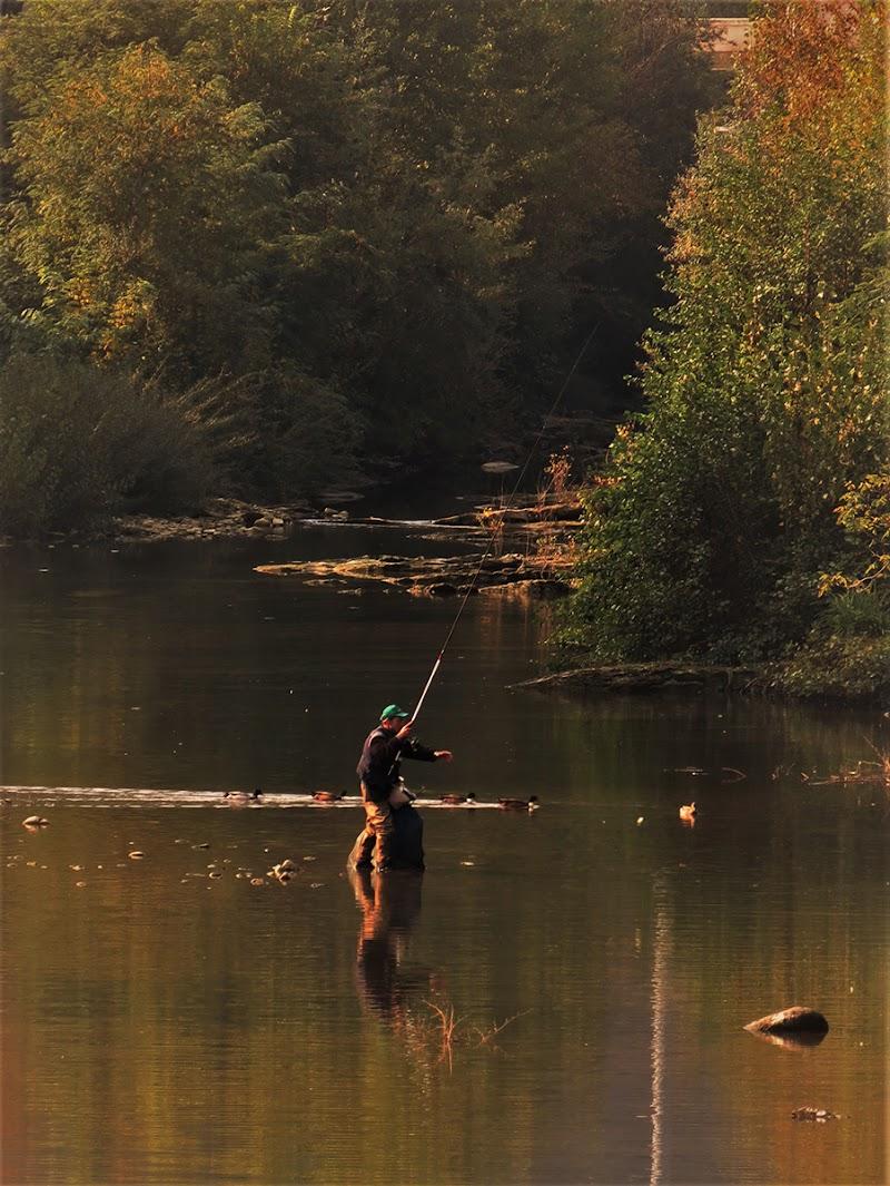 Un lancio nell'autunno di EmmaPhotos