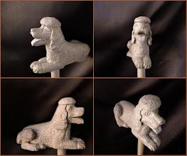 Photo: Bastón caniche. Talla en madera. Woodcarving.   Para leer algo más en relación con esta obra ir al blog: http://tallaenmadera-woodcarving-esculturas.blogspot.com/2015/11/ocho-bastones.html
