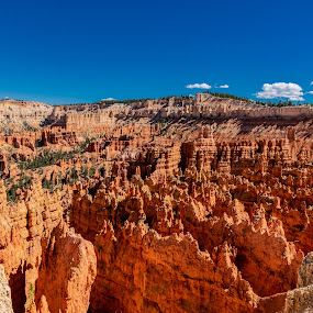 Bryce Canyon by Bert Templeton - Landscapes Deserts ( utah, red, rock, canyon, usa, bryce canyon, desert, red rock,  )