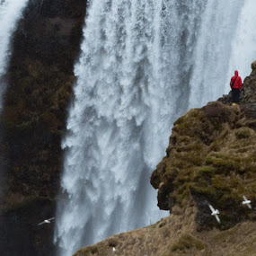Skogafoss Falls by VAM Photography - Nature Up Close Water ( iceland, waterfalls, nature, travel, places, landscape,  )