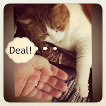 Photo: Business agreement with my cat: Deal! #cat #cats #pet #pets #intercer #petsofinstagram #animal #catstagram #catlovers #paw #paws #ilovemycat #cute #cutie #beautiful #deal #business #funny #meow - via Instagram, http://instagr.am/p/NL4nF3pfsJ/