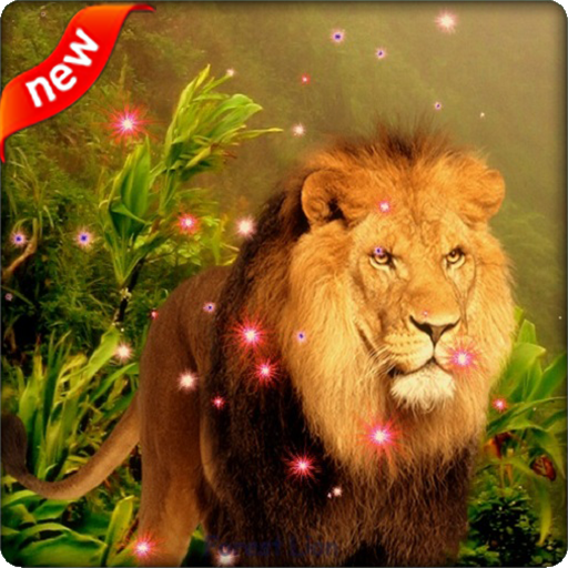 Lion Live Wallpaper Apps On Google Play