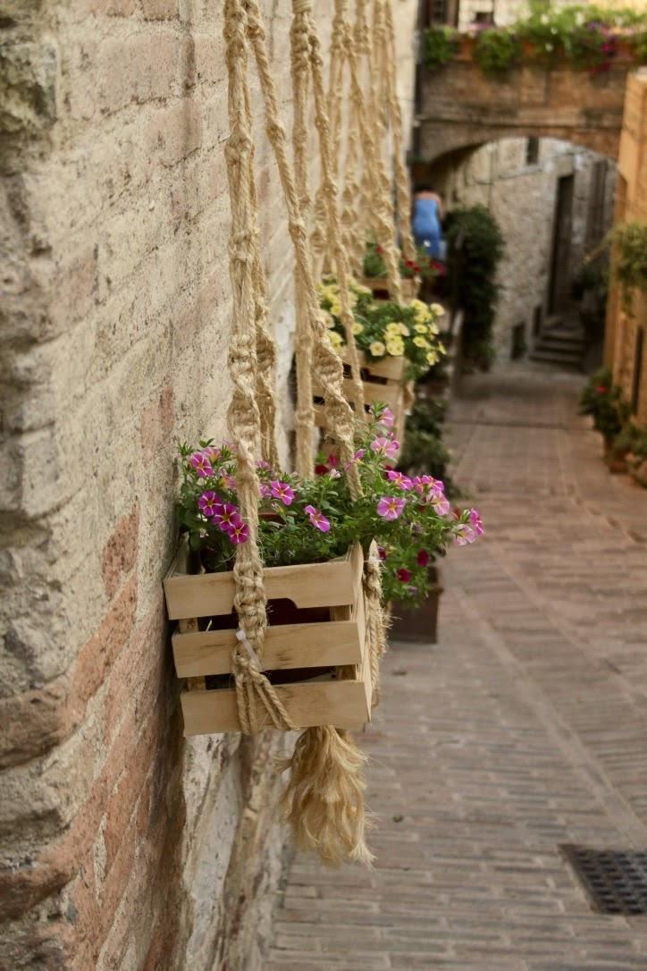 Fiori d'Italia di Luciaaaa