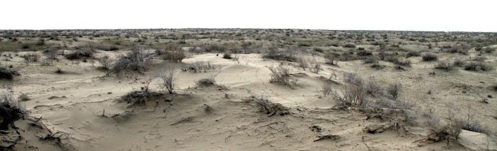 Photo: Karakumų dykuma.  Karakum's desert.