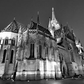 Magestic Church by Kinga Urban - Black & White Buildings & Architecture ( church, black and white, places, architecture, travel photography,  )