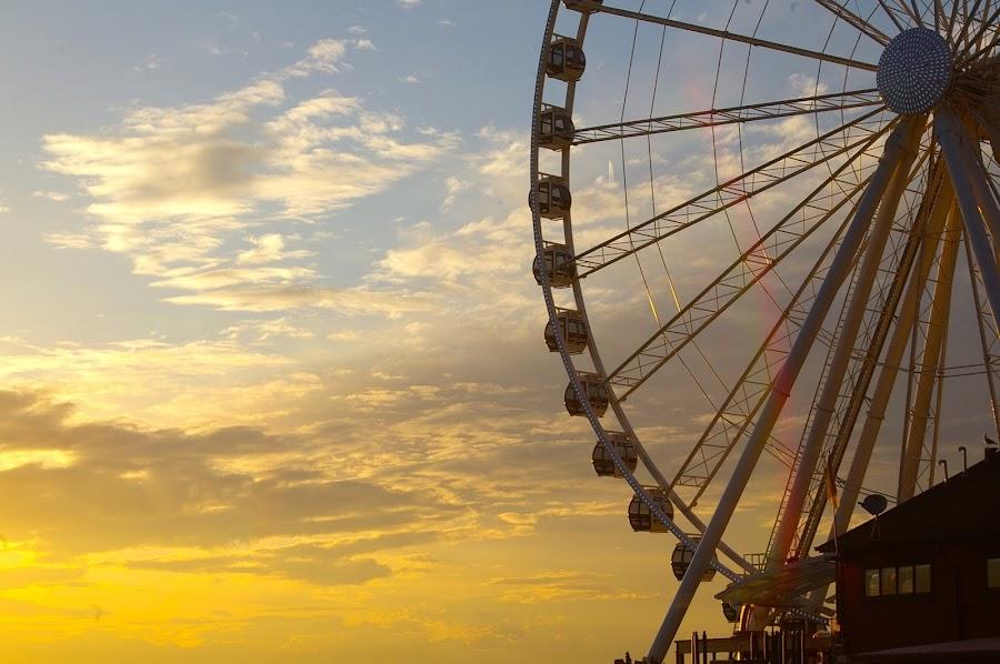 Golden Sunset Behind Seattle's Ferris Wheel by Holly Homan - City,  Street & Park  Street Scenes ( sunset, ferris wheel,  )