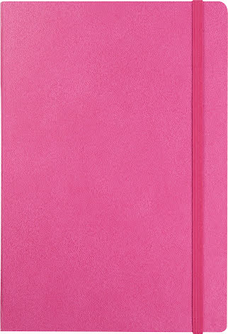 Anteckningsbok DotNotes rosa
