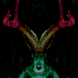Psycadelic Jorge by Anthony Balzarini - Digital Art Abstract ( #antlers, #abstractphotography, #jackalope )