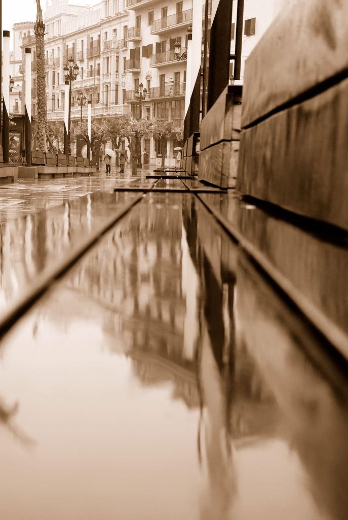Rainwater di p.patrick