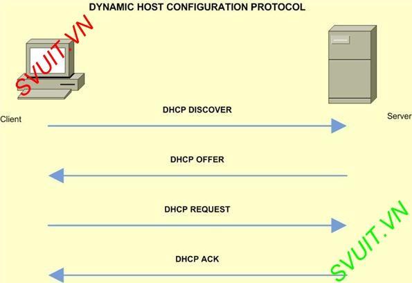Cơ chế hoạt động của DHCP Server