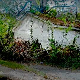 Left Behind by Edward Gold - Digital Art Places ( digital photography, greenery, white, old building, bushes, artistic, pathway, old place, building, digital art,  )