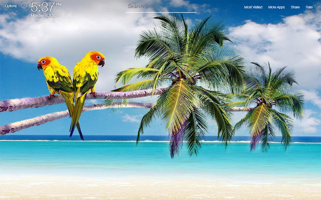 Beach And Ocean Wallpapers Fullhd New Tab