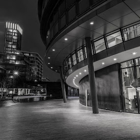 London City Hall by Zisimos Zizos - Buildings & Architecture Architectural Detail ( city hall, building, winter, london, thames, black and white, architecture )