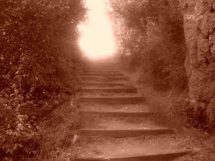 La scala verso il paradiso... di aloiV
