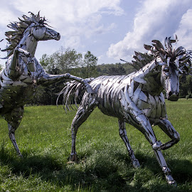 by Art Tilts - Artistic Objects Other Objects ( statues, green, horses., metal, silver )