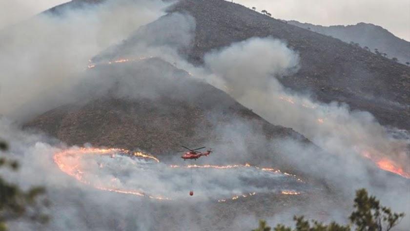 Imagen del incendio de Sierra Bermeja, en Málaga.