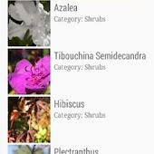 Categories of Flowers