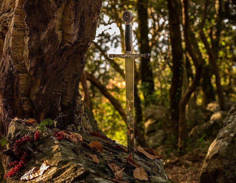 La spada nella roccia di Fiore Doncovio