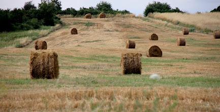 Photo: Day 88 - Straw Bales