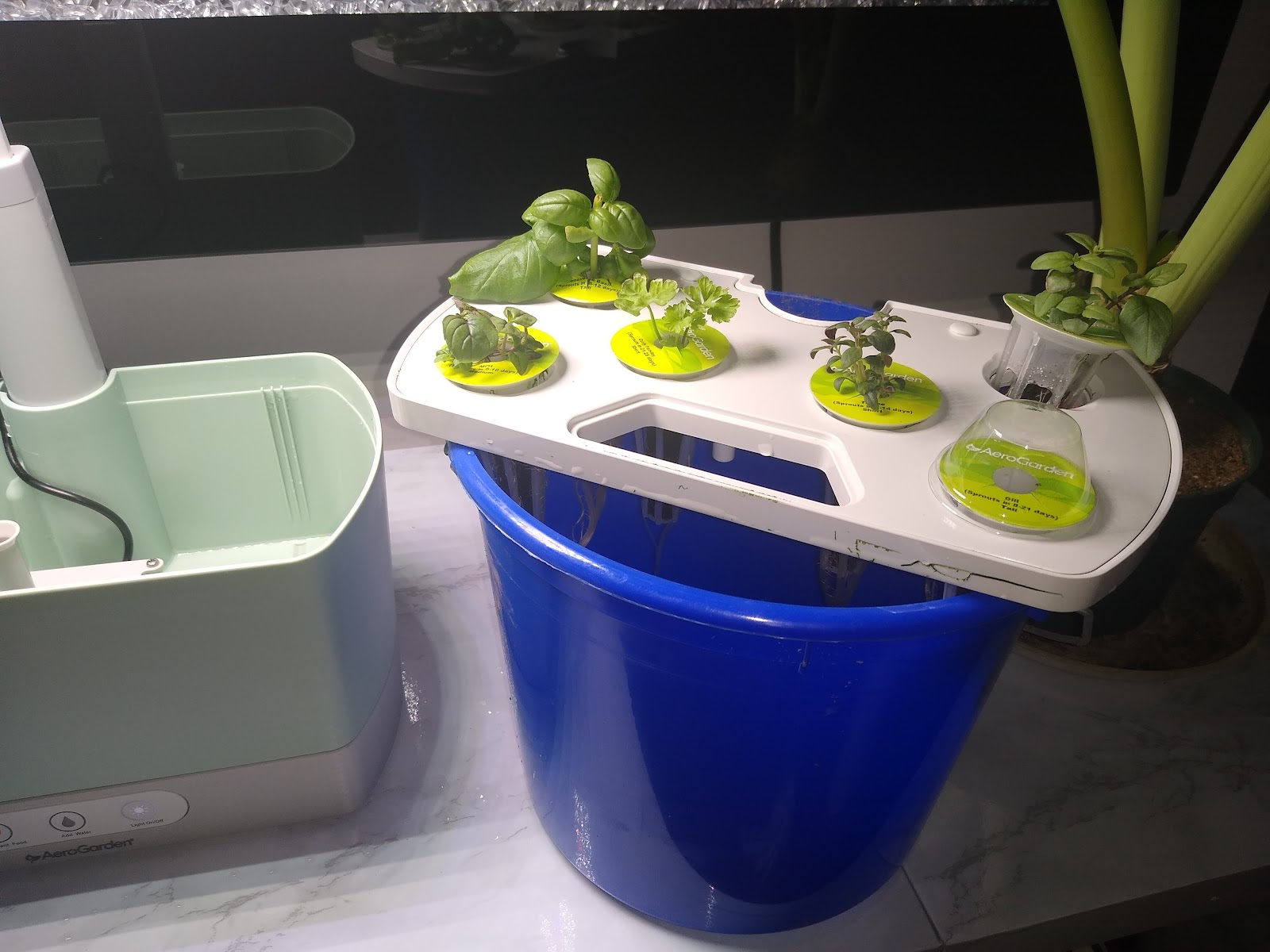AeroGarden Harvest changing water picture