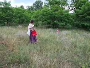 Photo: generációk. a kutya a fűben ás valahol valamit https://www.facebook.com/reginakertgodollo