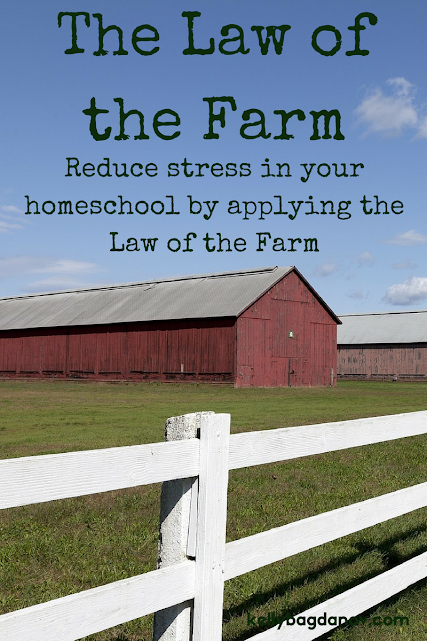 If you are feeling overwhelmed or that you aren't accomplishing enough in your homeschool day, this tool will give you a better perspective.
