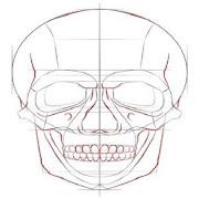 Draw Skulls icon
