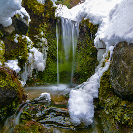 by Keith Sutherland - Nature Up Close Water ( mossy, canada, snow, waterfall, british columbia, winter, cold, ice )