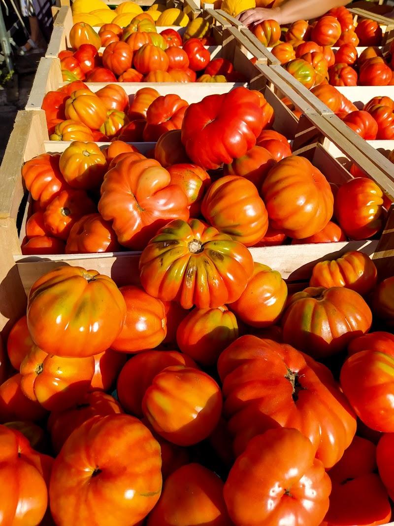 Pomodori belli di Emanuela Pelusi