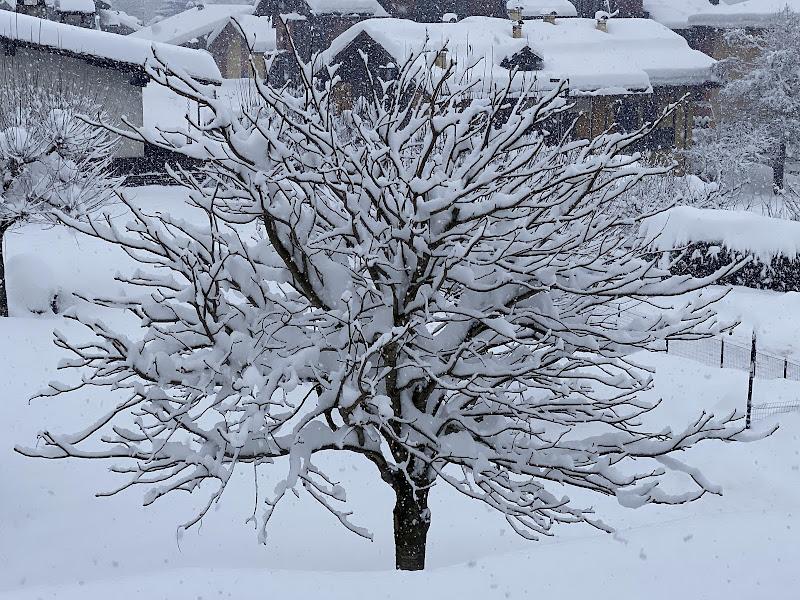 Bianco inverno di neve di NoRi74