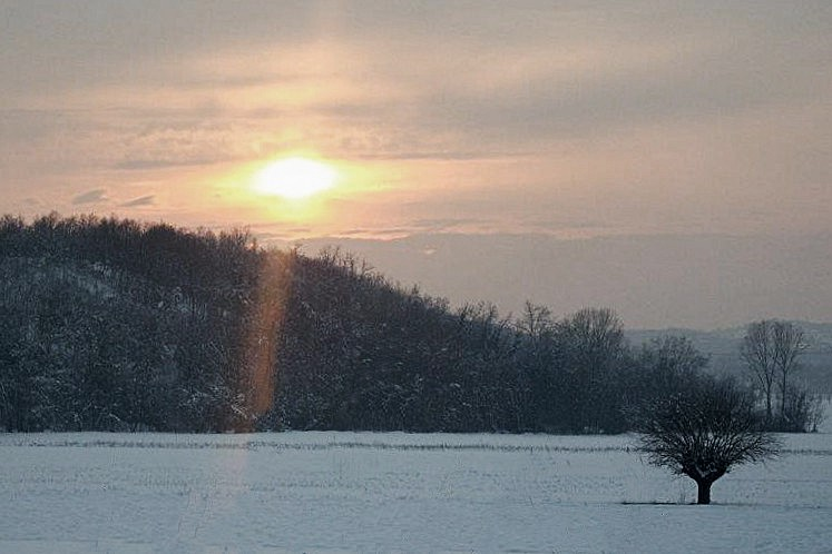Tramonto sopra la neve di Barbara Ricagno