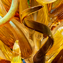by Myra Brizendine Wilson - Artistic Objects Glass ( chihuly glass, chihuly exhabit, glass, glass sculpture, biltmore, biltmore estate )