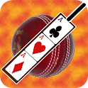 Cricket Poker Card Puzzle icon