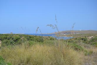 Photo: Punta de Sa Torre - Far de Cavalleria