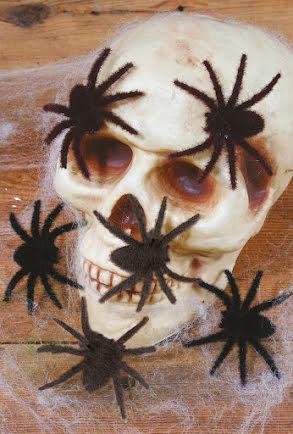Håriga spindlar