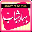 Jawani Ki Baharain icon